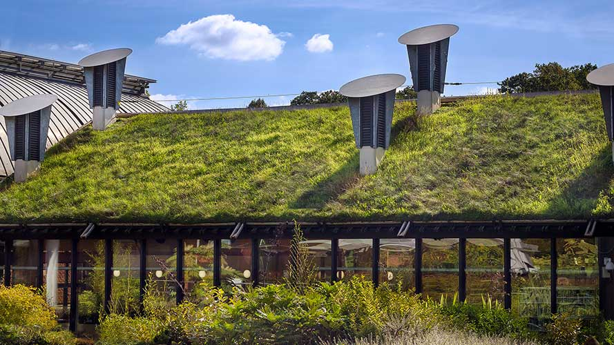 10-Tips-for-Building-Eco-Friendly