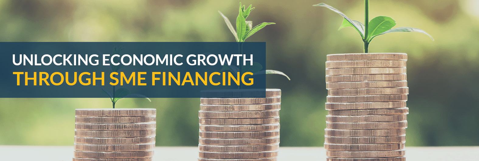 Unlocking economic growth through SME Financing